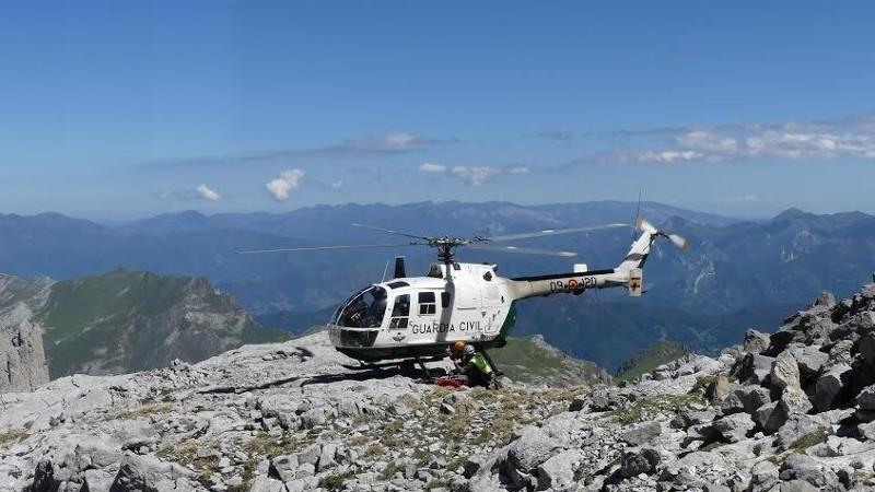 Picoseuropahelicoptero